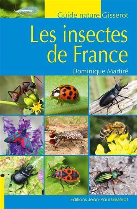 Les insectes de France