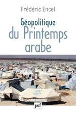 Vente Livre Numérique : Géopolitique du Printemps arabe  - Frédéric Encel