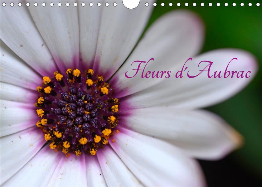 Fleurs d'aubrac (calendrier mural 2021 din a4 horizontal) - les fleurs du plateau de l'aubrac en ave