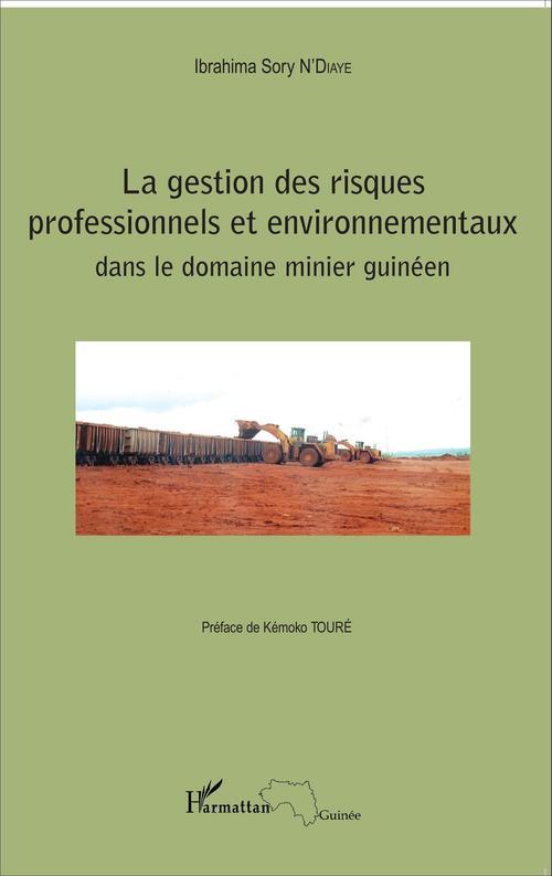 Gestion des risques professionnels et environnementaux dans le domaine minier guineen