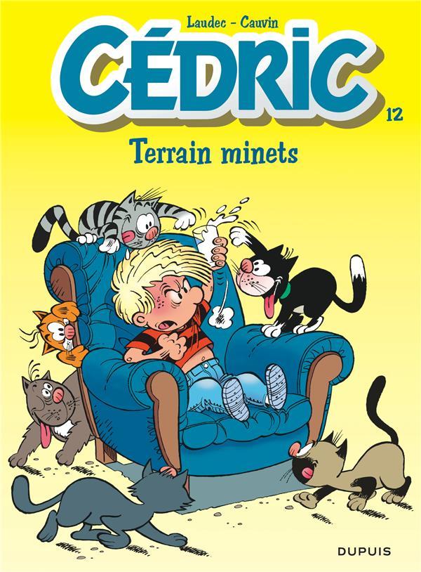 CEDRIC T.12  -  TERRAIN MINETS