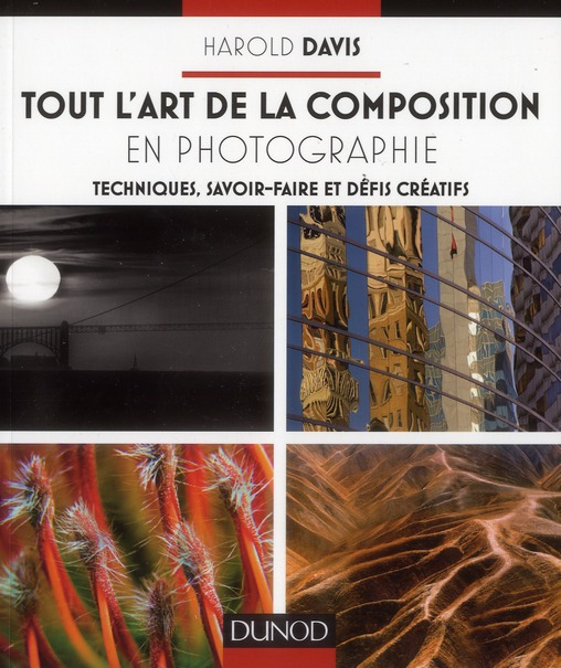 Tout L'Art De La Composition En Photographie ; Techniques, Savoir-Faire Et Defis Creatifs