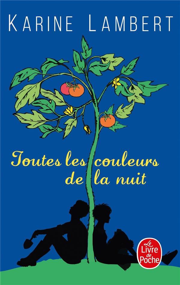 TOUTES LES COULEURS DE LA NUIT LAMBERT, KARINE