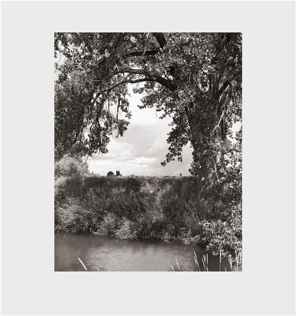 Robert adams cottonwoods