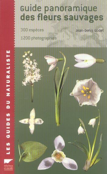 Guide panoramique des fleurs sauvages