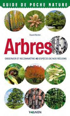 Arbres ; observer et reconnaitre 40 espèces de nos régions