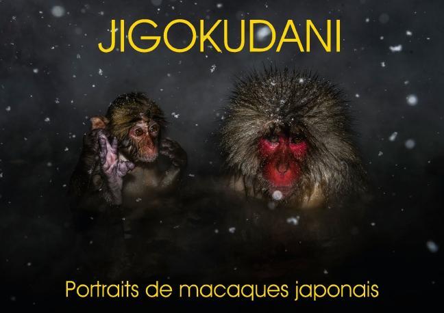 Jigokudani portraits de macaques japonais (Livre poster DIN A4 horizontal)