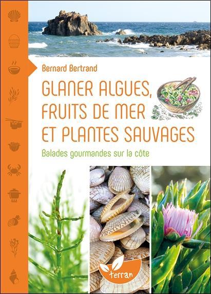Glaner algues, fruits de mer et plantes sauvages ; balades gourmandes sur la côte