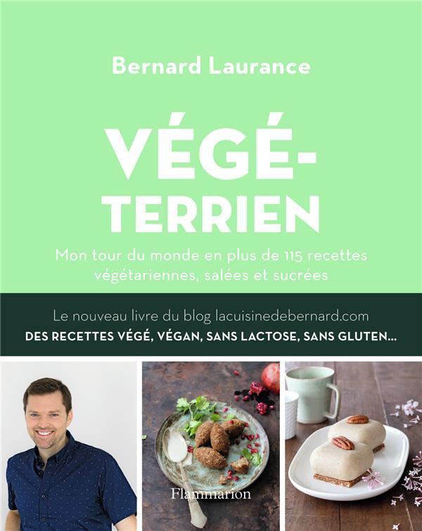 Végéterrien ; mon tour du monde en plus de 115 recettes végétariennes, salées et sucrées