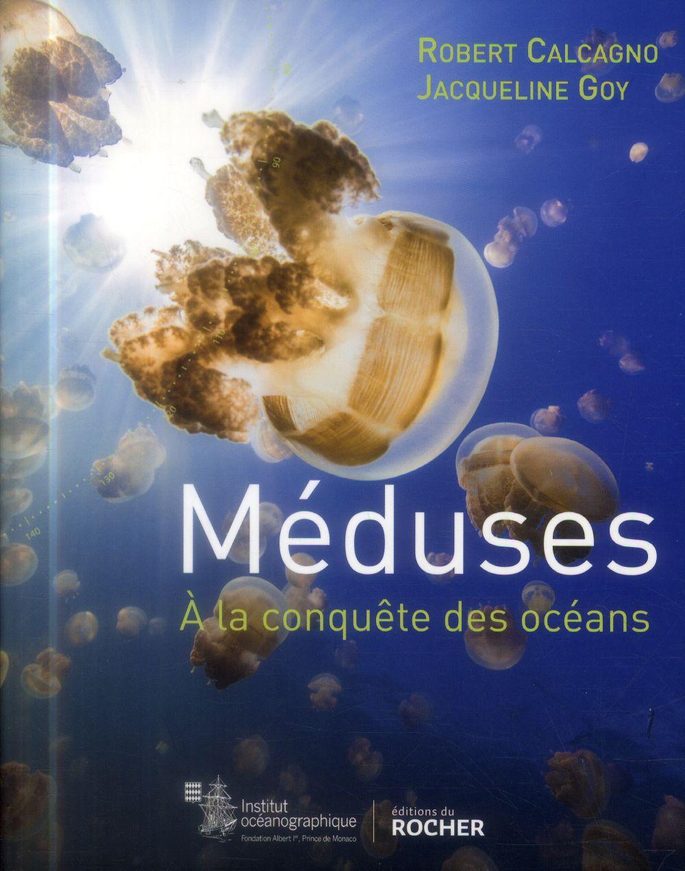 Méduses ; à la conquête des océans