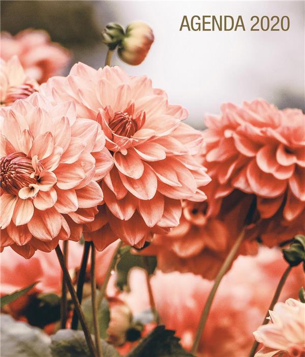 PRIER AGENDA (EDITION 2020)