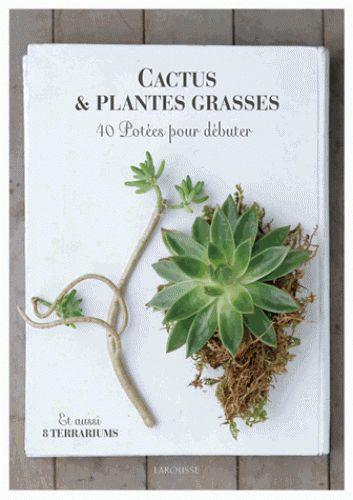 cactus et plantes grasses