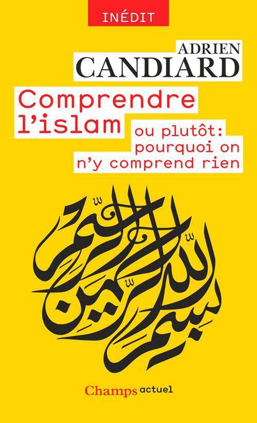 Comprendre l'islam ou plutôt, pourquoi on n'y comprend rien