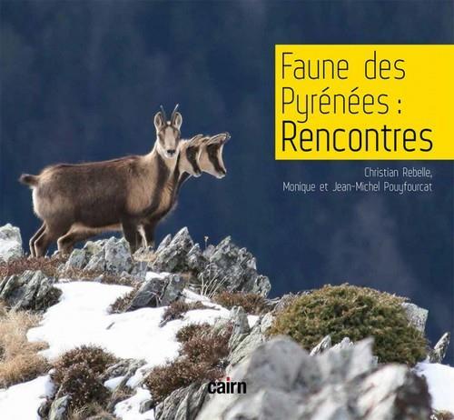 Faune des Pyrénées : rencontres