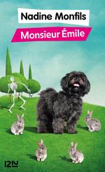 Vente Livre Numérique : Monsieur Émile  - Nadine Monfils