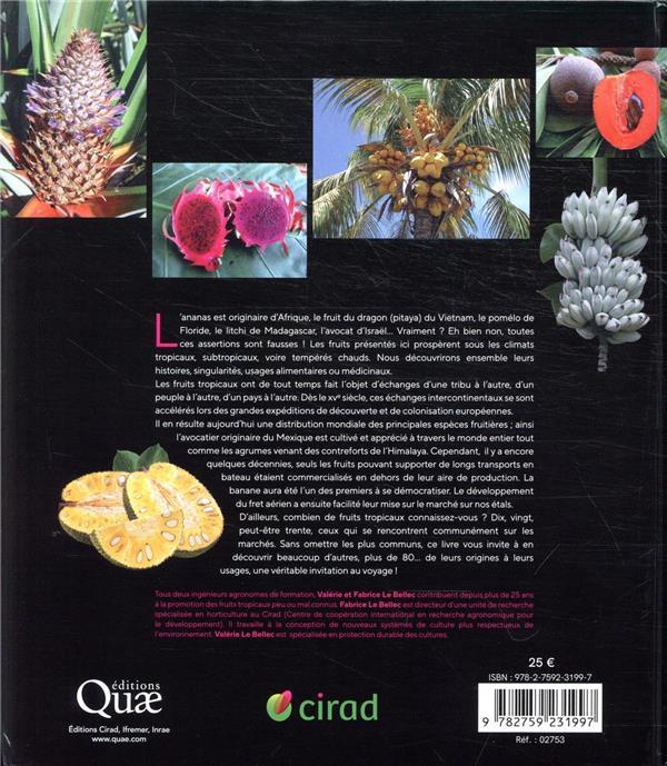 Fruits tropicaux ; invitation au voyage