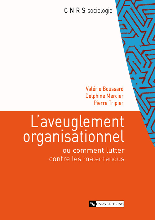 Aveuglement organisationnel. analyses sociologiques...