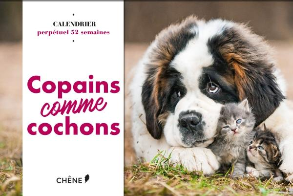Calendrier 52 semaines copains comme cochons